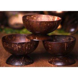 Coconut Shell Bowl (1pcs)